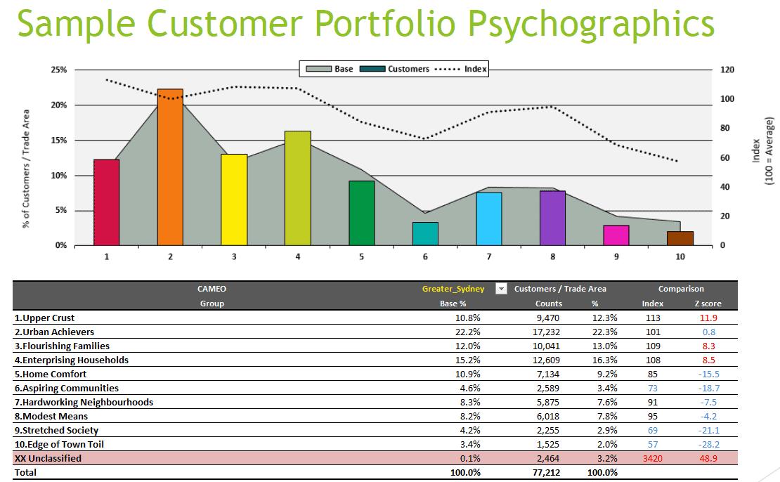 customer portfolio psychographics